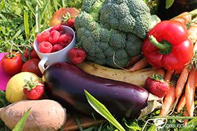 Das Immunsystem kann man durch ausgewogene Ernährung stärken.